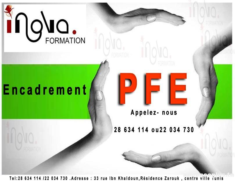 Guide PFE